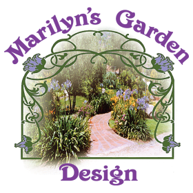 Low Water Garden Marilyn S Garden Designmarilyn S Garden Design
